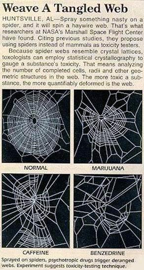 web drug